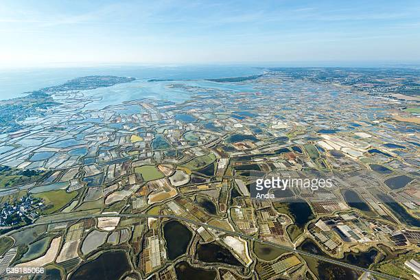 Aerial view over the salt marshes of Guerande Salt workers' plots in the salt marshes