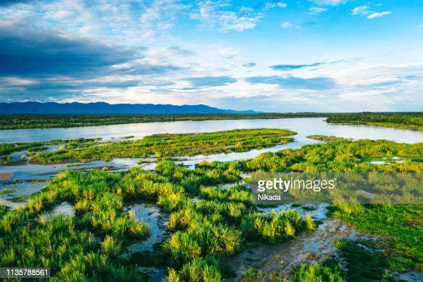 aerial view over the zambezi river, zambia - zambia stock pictures, royalty-free photos & images