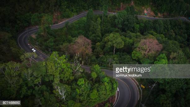 Aerial view road and forest in the evening.