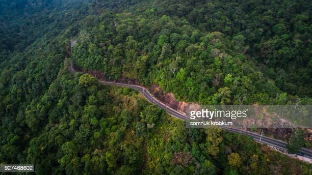 Aerial view road and green mountain.