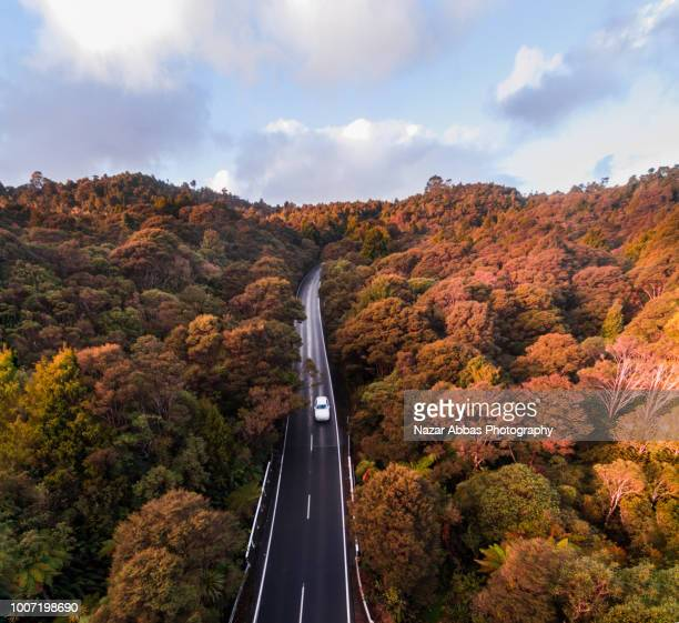Aerial view road cutting through forest.