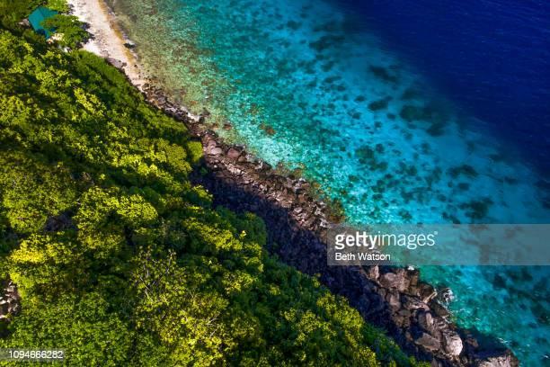 Aerial view rocky coastline Apo Island