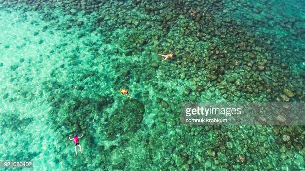 Aerial view scuba drivers in clear sea water in summer by drone