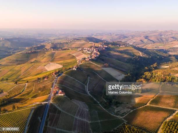 aerial view serralunga d'alba and vineyards in autumn, piedmont, italy - piemonte - fotografias e filmes do acervo