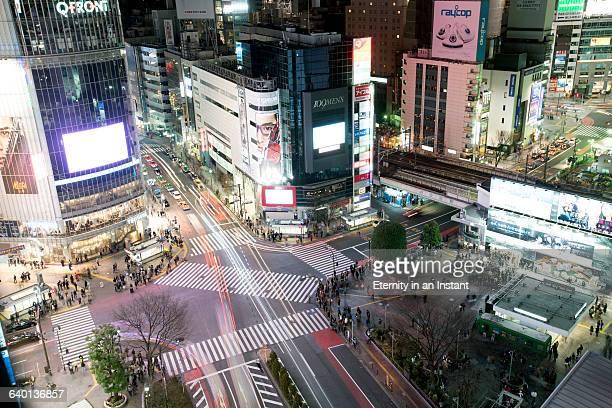 Aerial view Shibuya crossing at night, Tokyo
