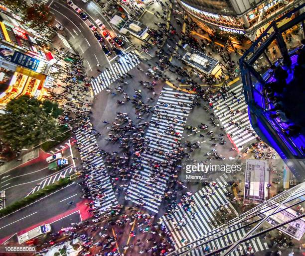 aerial view shibuya crossing tokyo - overhead view of traffic on city street tokyo japan stock photos and pictures