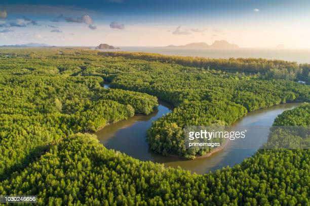 aerial view shot tropical beach sea with long tail boat in south thailand - seascape stock pictures, royalty-free photos & images