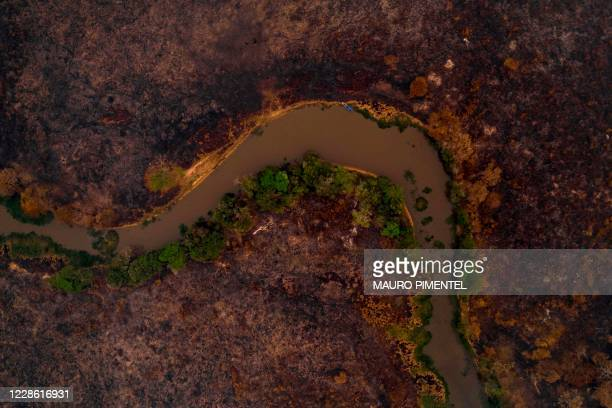 Aerial view showing a burnt area of the Pantanal, near the Transpantaneira park road which crosses the world's largest tropical wetland, in Mato...