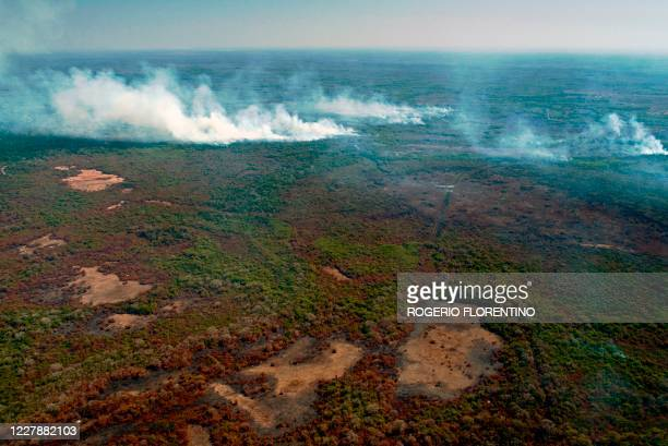 Aerial view showing large scale forest fires in Pocone, Pantanal region , Mato Grosso State, Brazil on Ausgust 1, 2020.