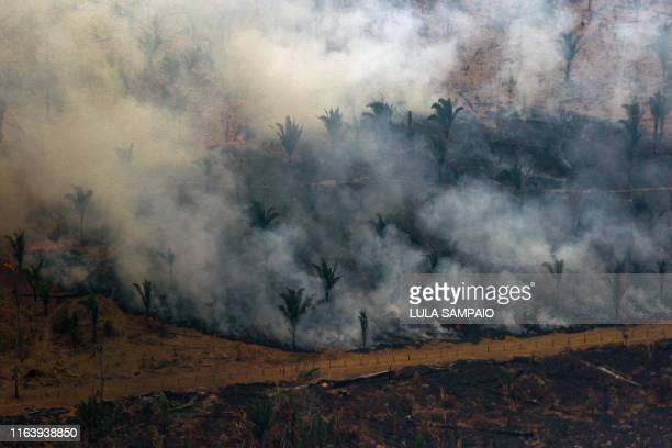 TOPSHOT Aerial view showing smoke billowing from a patch of forest being cleared with fire in the surroundings of Boca do Acre a city in Amazonas...