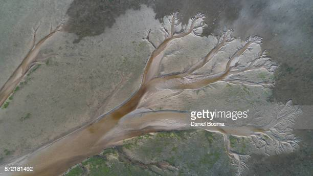 aerial view straight down of the natural shapes and textures on schiermonnikoog island in the netherlands - 溝 ストックフォトと画像