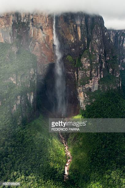 Aerial view taken on December 16 2014 of the Angel Falls the world's highest waterfall with a height of 979 meters located in Canaima National Park...