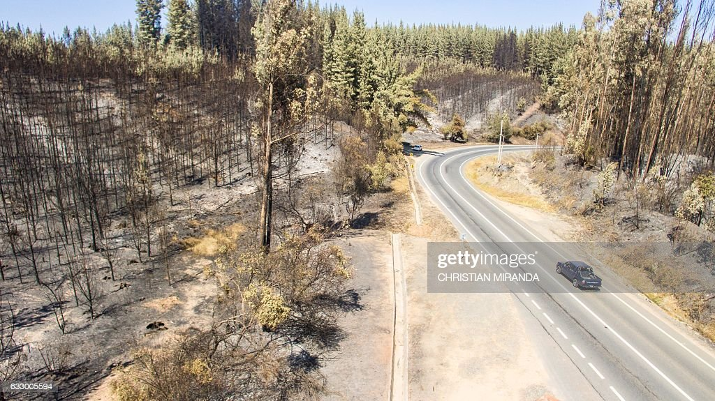 Aerial view taken with a drone of a forest devastated by fire near La Florida, Bio Bio region , some 420 km south of Santiago, on January 29, 2017. Forest fires ravaging southern Chile have now killed 11 people, President Michelle Bachelet said Saturday, as firefighters waged an all-out battle to extinguish the raging infernos. / AFP / Christian Miranda