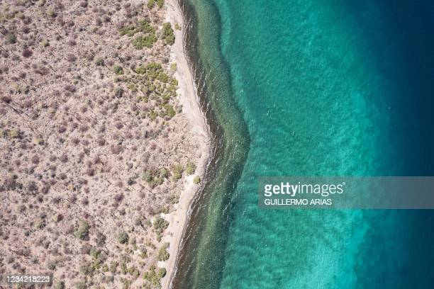 Aerial view the shore on the Sea of Cortez near Mulege, South Baja California state on July 20, 2021. - The Gulf of California, also known as the Sea...