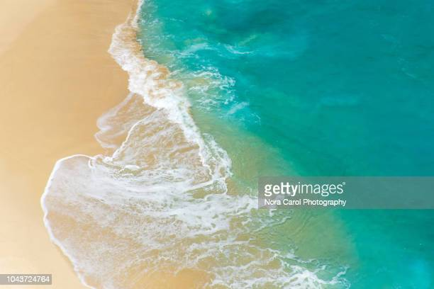 aerial view to tropical sandy beach and blue ocean - seascape stock pictures, royalty-free photos & images