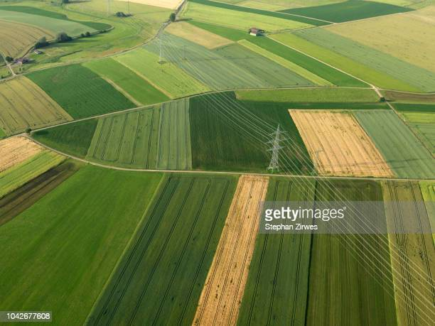 aerial view vibrant green agricultural crops, donaueschingen, baden-wuerttemberg, germany - power line stock pictures, royalty-free photos & images
