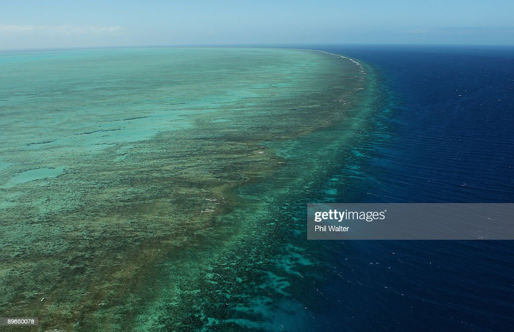 """Great Barrier Reef Threatened With Extinction """"Within 20 Years"""" : News Photo"""