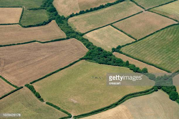 aerial views over farmland, cornwall during a dry summer. - patchwork stock pictures, royalty-free photos & images