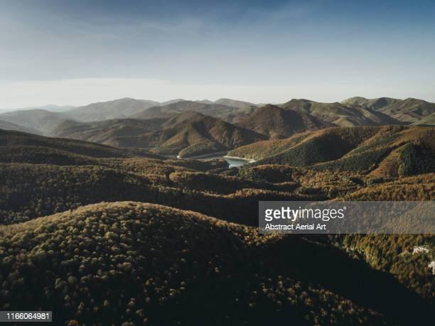 aerial views over the irati forest, navarre, spain - mountain range - fotografias e filmes do acervo