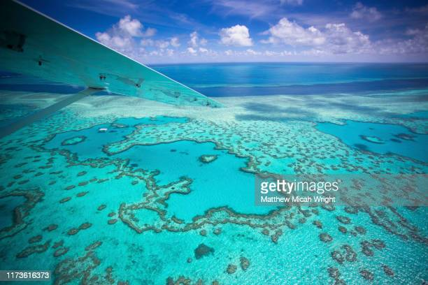 Worlds Best Coral Reef Wallpaper Stock Pictures Photos