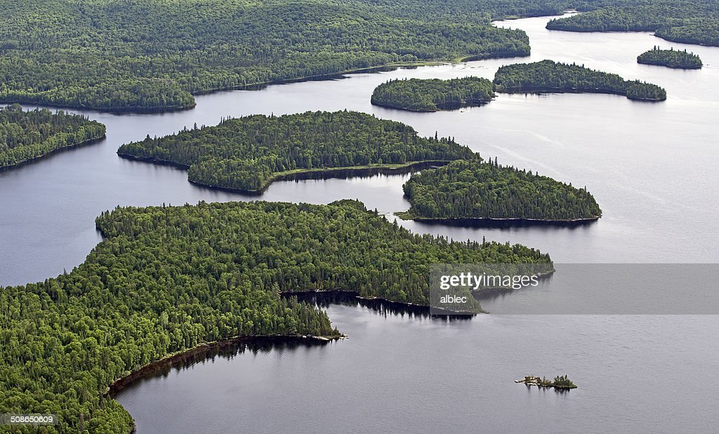 aerial wild forest : Stock Photo