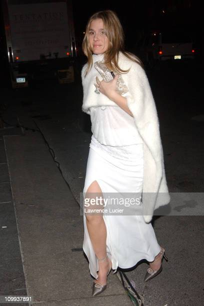 Aerin Lauder during Christian Dior's Winter Fete At The Frick at The Frick in New York New York United States