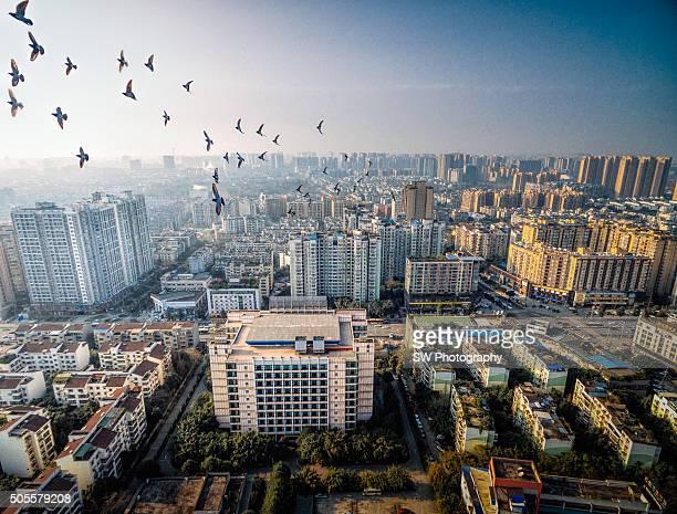 Aero photo of Chengdu city, China