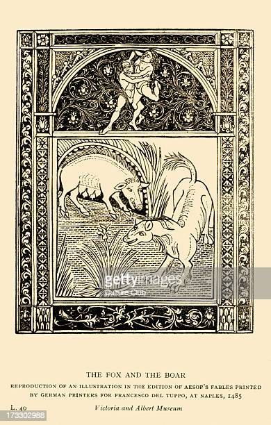 Aesop 's fables The Fox and the Boar Illustration after 1485 edition printed in Naples by German printers for Francesco del Tuppo Reproduction Aesop...