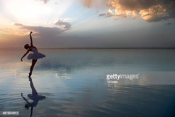 aesthetic dancing on the beach - ballet dancer stock pictures, royalty-free photos & images