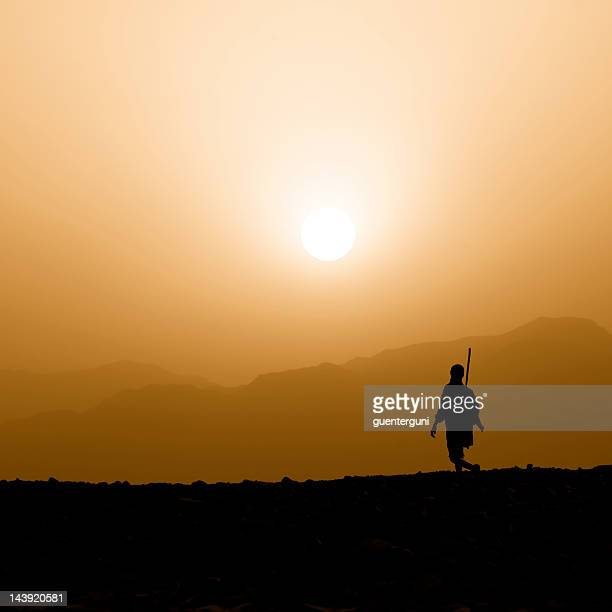 afar herder walking against the sunset, danakil desert - djibouti stock pictures, royalty-free photos & images