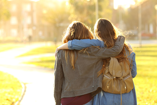 Affectionate friends walking at sunset in a park 1127542683