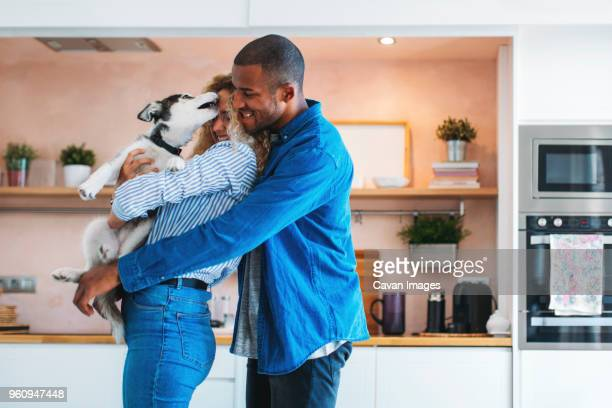 affectionate multi-ethnic couple playing with siberian husky at home - domestic animals stock pictures, royalty-free photos & images
