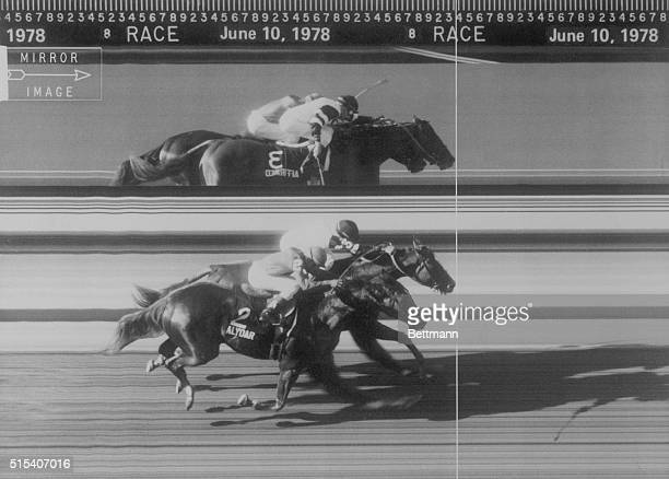 Affirmed nips Alydar by a nose to win the Belmont Stakes James Precision Photo Finish shows just how close it was Image at top is reversed in mirror