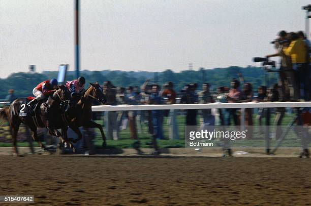 Affirmed ridden by Steve Cauthen nips Alydar and Jorge Velasquez at the wire to win the Belmont Stakes June 10 and racing's coveted Triple Crown