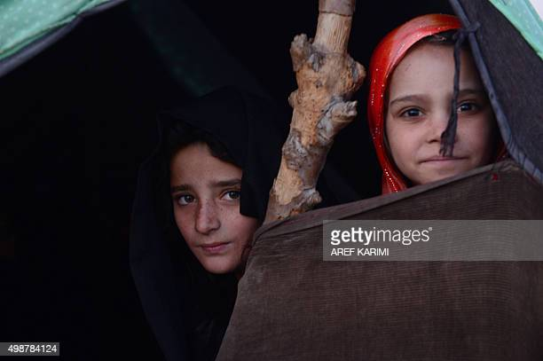 Afghan girls look on from their tent on the outskirts of Herat on November 26 2015 AFP PHOTO / Aref Karimi / AFP / Aref Karimi