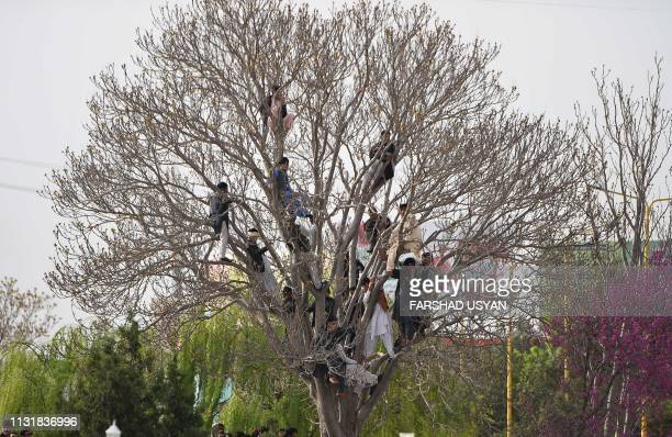 TOPSHOT Afghan men look on from a tree as other gather near the HazrateAli shrine for Nowruz festivities which marks the Afghan new year in...