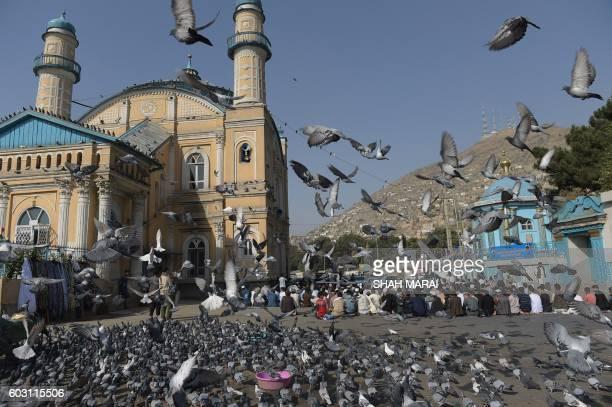 TOPSHOT Afghan men offer EidalAdha prayer at the Shahe Do Shamshira mosque in Kabul on September 12 2016 Afghans started celebrating Eid alAdha or...