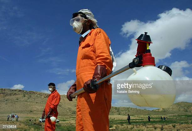 Afghan men wearing protective masks prepare to spray insecticide in a locust-infested field near Paiga Tash in Samargan Province, Afghanistan, May 4,...