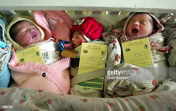 Afghan newborns sleep together in a large crib in order to keep warm February 11, 2002 in a maternity ward at the Malalai hospital in Kabul,...