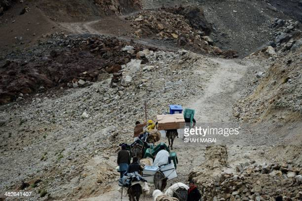 Afghan villagers use donkeys to transport election materials as they head back to their village along a country road high in the mountains of Shutul...