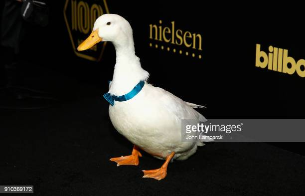 Aflac Duck attends 2018 Billboard Power 100 List at Nobu 57 on January 25 2018 in New York City