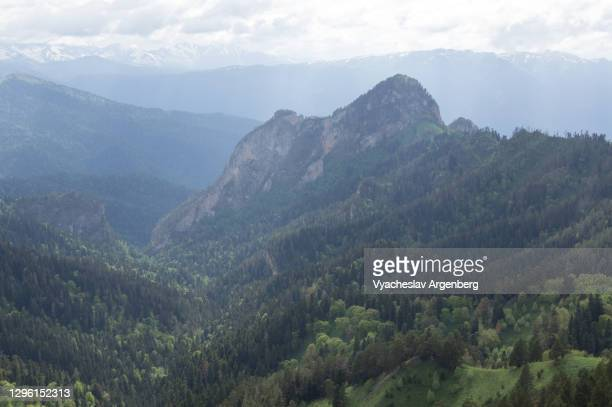 afonka valley, adygea, caucasus mountains - argenberg stock pictures, royalty-free photos & images