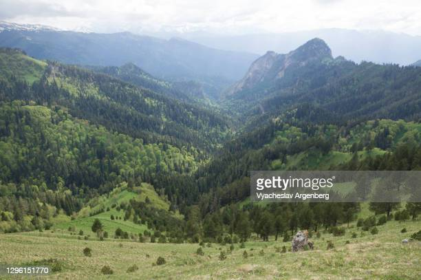 afonka valley, adygea, western caucasus - argenberg stock pictures, royalty-free photos & images