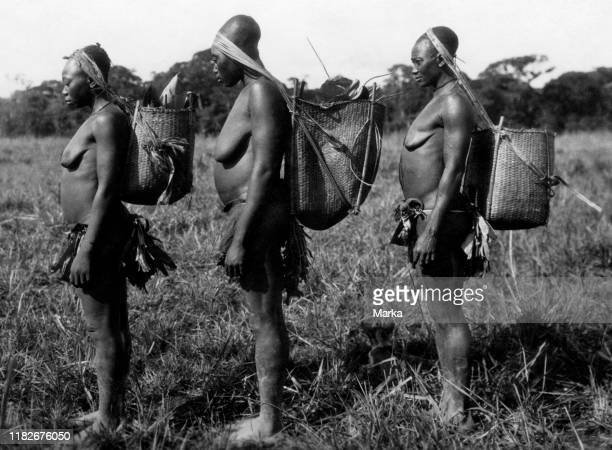 Africa congo Belgian pygmy women Mangbetu head deformed 192730