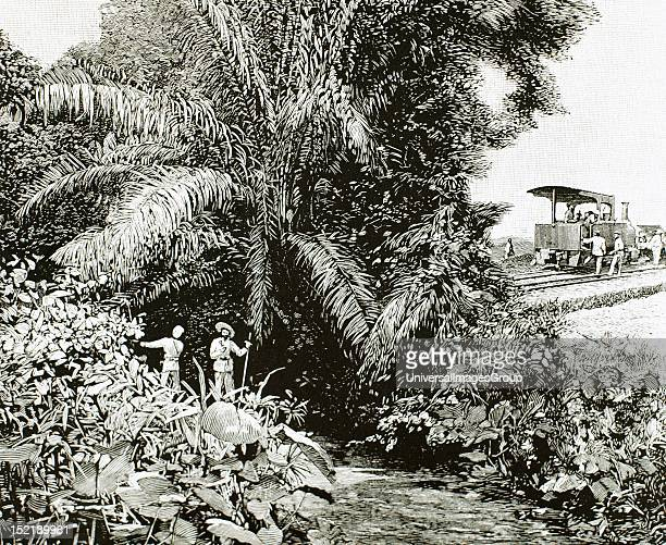 Africa Congo Construction of the railway in the territory colonized by Belgium Engraving in 1892