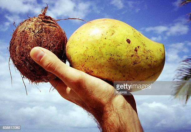 Africa, East Africa, Kenya, Mombasa Area, View Of Coconut And Fresh Fruits (Unknown Variety) (Year 2000)