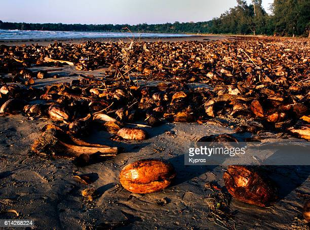 Africa, East Africa, Tanzania, View Of Discarded Coconut Husks From A Local Factory Polluting Beach (Year 2000)