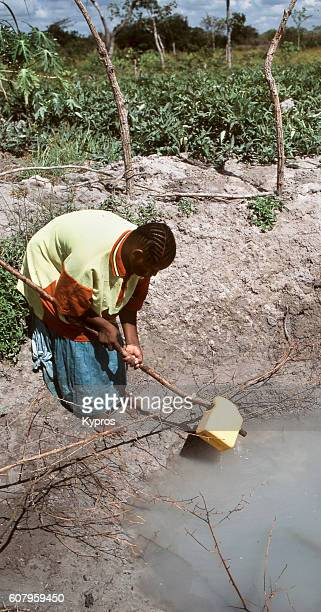 africa, east africa, tanzania, view of woman collecting drinking water from water hole in jungle (year 2000) - 2000 2009 stock pictures, royalty-free photos & images
