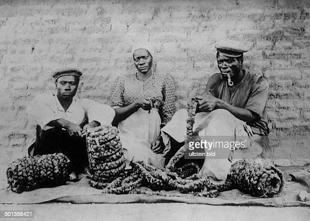 Africa Khoikhoi ethnic group Women weaving tobacco probably in the 1910s