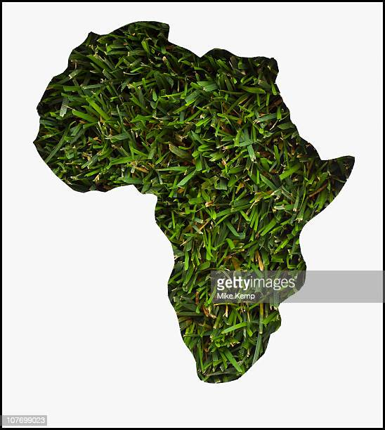 africa map made from grass - map of africa stock photos and pictures
